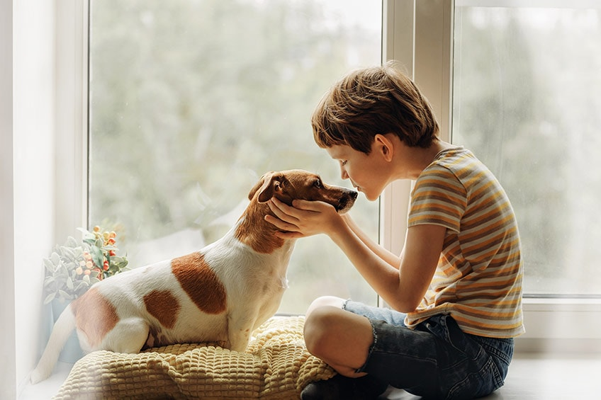 young boy and his dog in front of a window